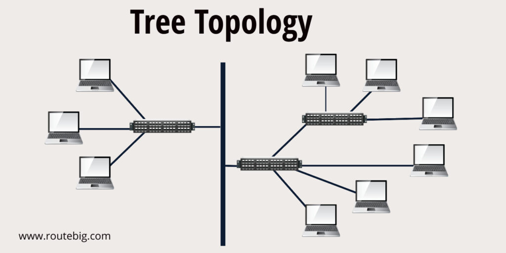 Tree Topology Diagram / Contoh Topologi Tree Sumber : routebig.com